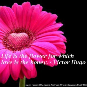 Pink flower with heart centre - Senti quotes