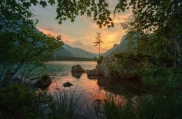 calm dawn - meditation