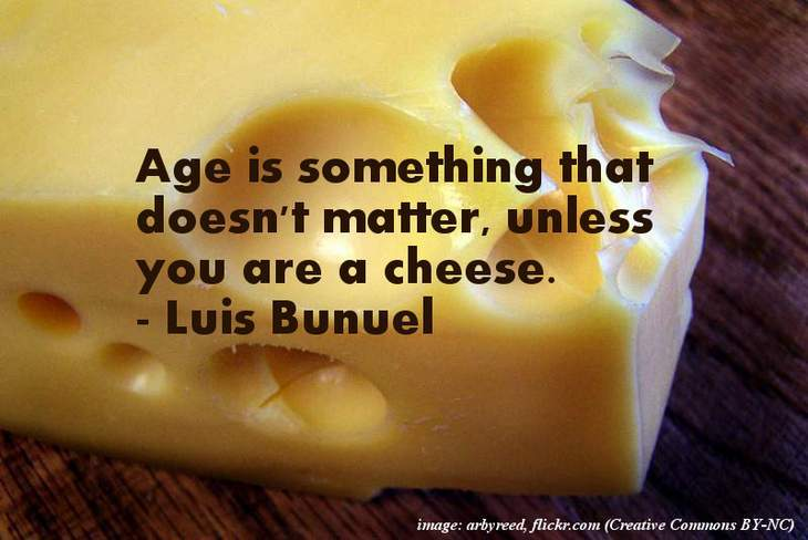 Cheese - The funniest quotes ever