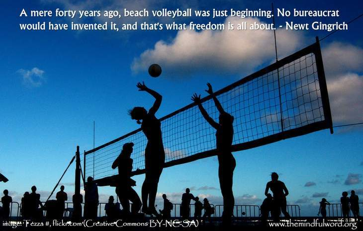 Beach volleyball - Funny quotes about freedom