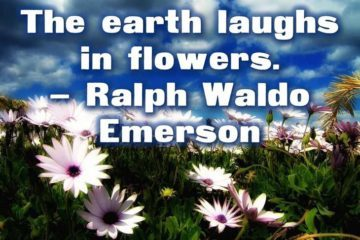 Environment thoughts for the day - Ralph Waldo Emerson