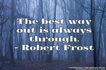 Foggy forest - Free motivational quotes