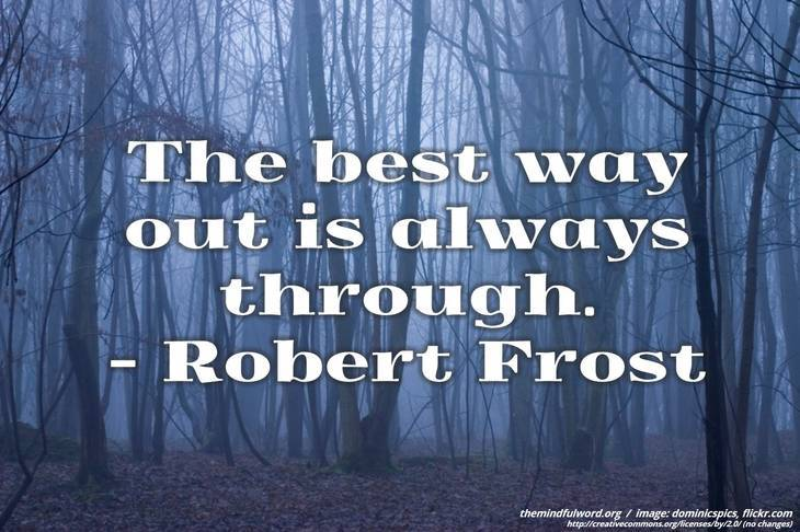 Misty forest - Free motivational quotes