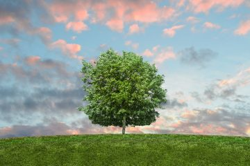 Eco Environment - Save The Planet
