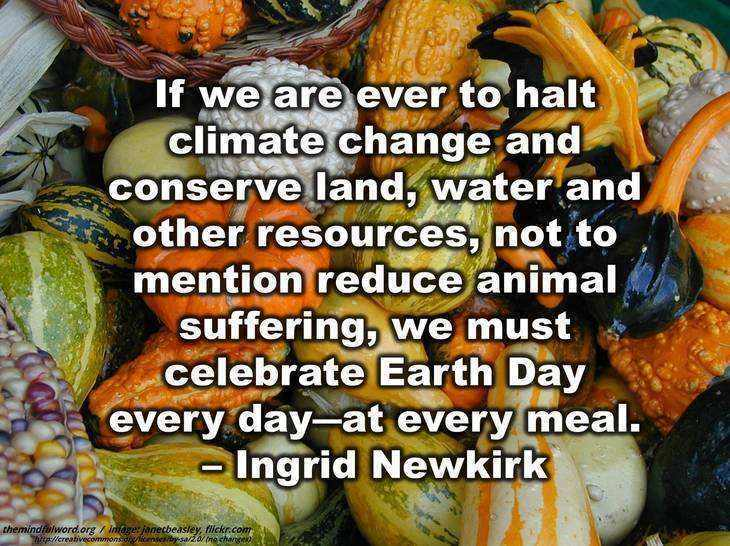 Pumpkins, gourds, corn - Earth day quotes
