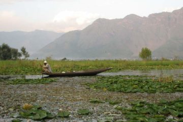 Paddling along Dal Lake, Srinigar, India