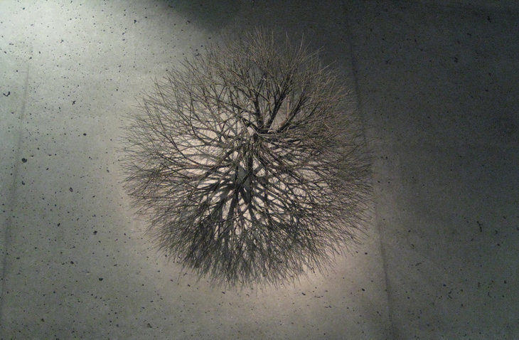 Tumbleweed - Alternating Current story