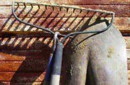 rake and shovel - garden sharing