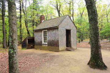 replica of thoreau's cabin in woods - thanks, thoreau