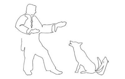 Man and dog - Journey towards inner peace