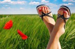woman's feet in sandals, red poppy, field