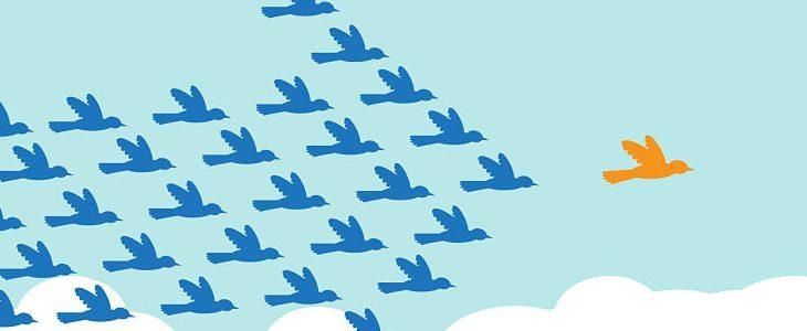 Birds flying in formation