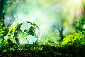Small globe on grass - Reviews of three mystical novels