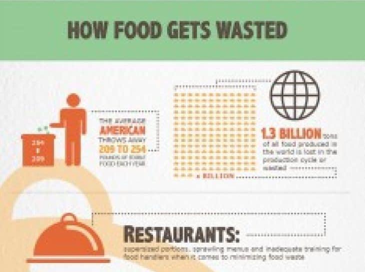 How food gets wasteda