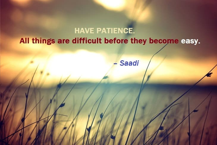 patience-grass-blowing-peaceful