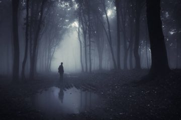 Man in shadowy wet wood - Poems by Ryan Warren