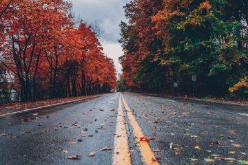 autumn road - sacrifice quotes