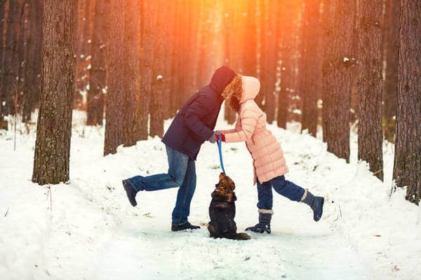 Couple walking dog kiss each other - How to love mindfully