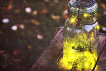 Fireflies in a jar - Poems by Mary Allison Cates