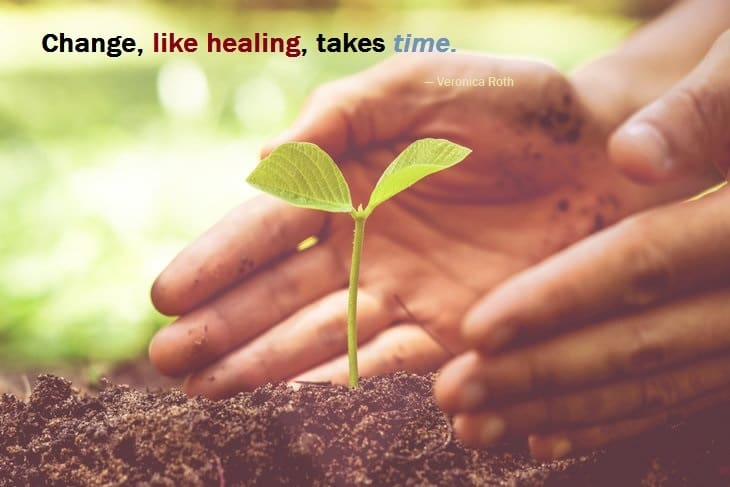 change-healing-growth-time-plant-soil-hands