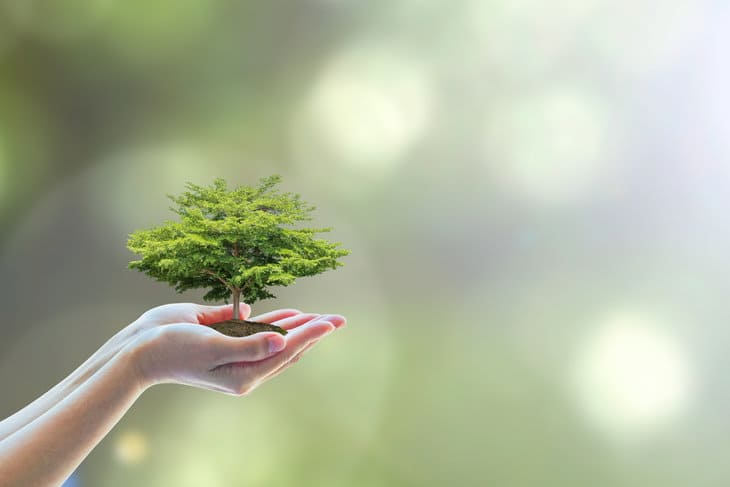 ikea a sustainable business Sustainable performance sustainability performance means the harmonisation of financial, environmental and social objectives in the delivery of your core business activities in order to maximise value.