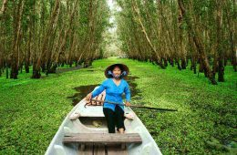 Ecotourism As A Benefit To A Region