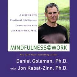 Jon Kabat-Zinn Mindfulness at Work audio