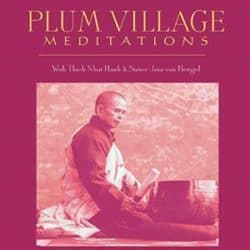 Plum Village Meditations audio
