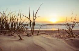 beach golden - robert frost quotes