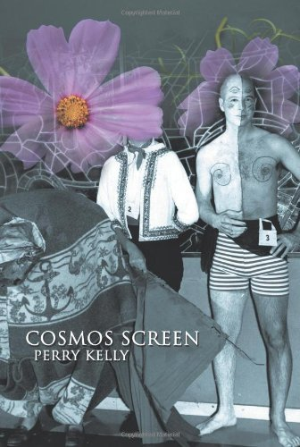 Cosmos Screen Book Cover