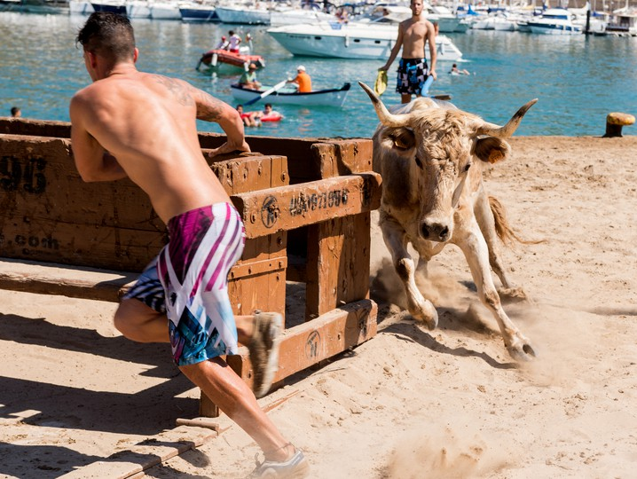 Heifer chasing young man on a beach in Spain