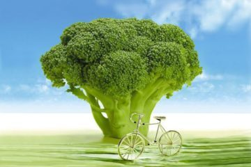 Huge chunk of broccoli and bicycle