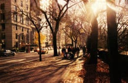 New York City street in autumn - Queens Vision 1983