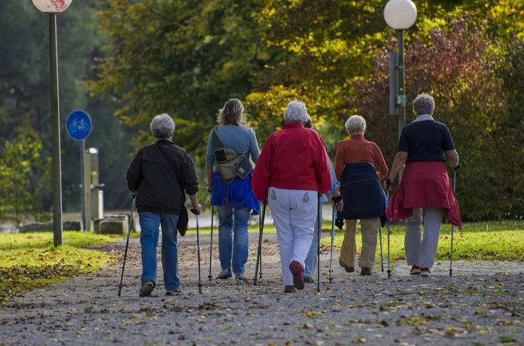 Group of seniors doing Nordic walking - Elderly care