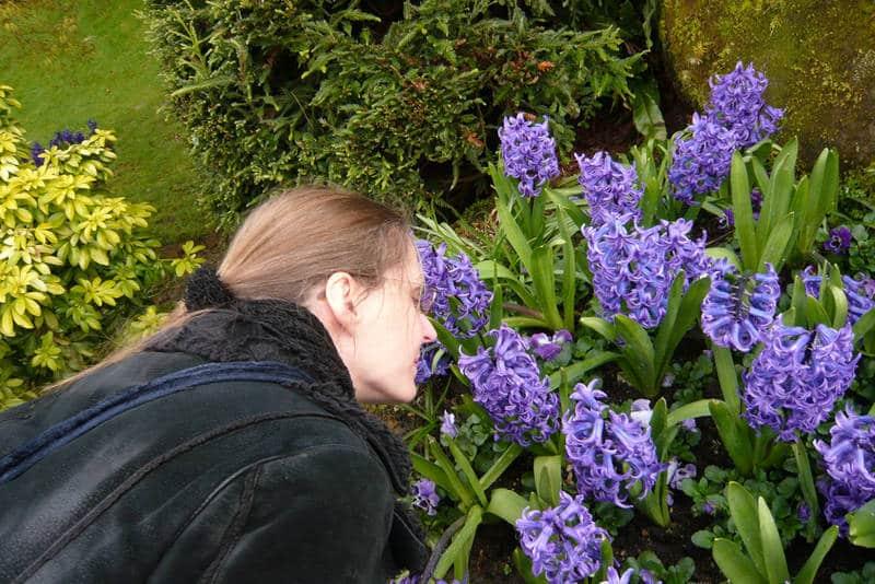 Woman smelling hyacinths - Restoring the light