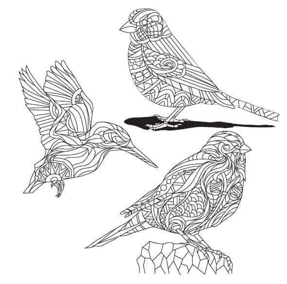 COOL COLORING PAGES: 6 free printable images from The Animal ...
