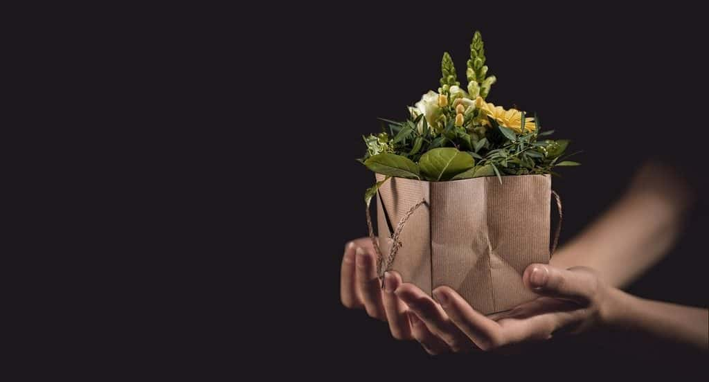 Hands holding gift of flowers