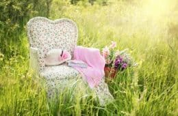 armchair in a field