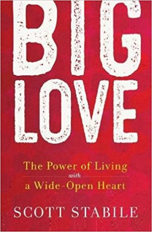 Front cover of book - Big Love
