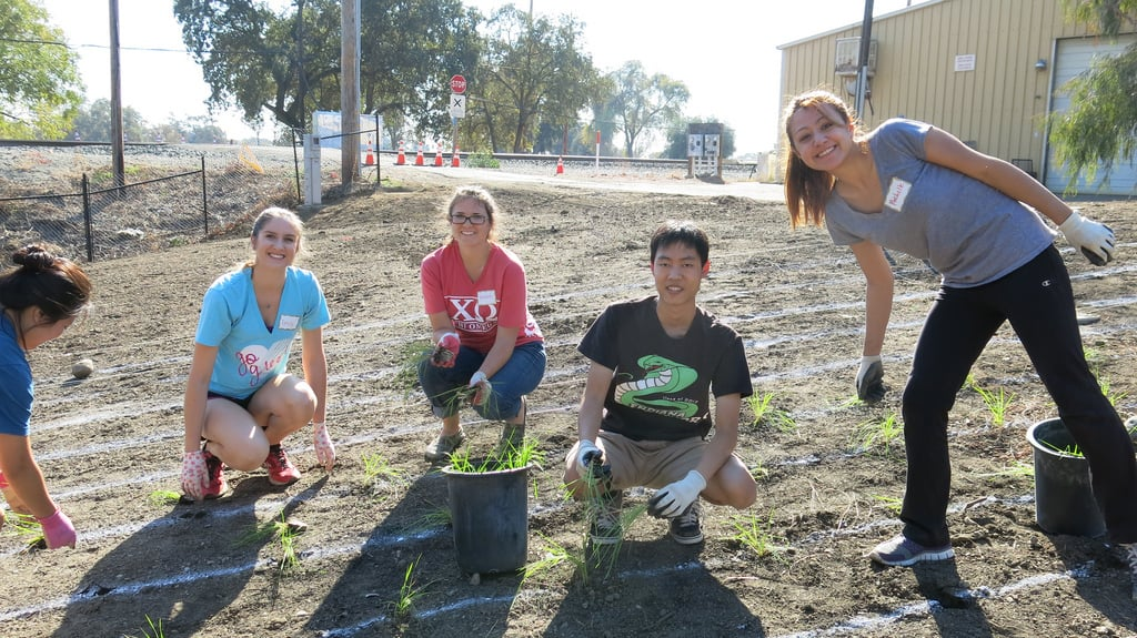 UC Davis community garden volunteers - Mind and consciousness