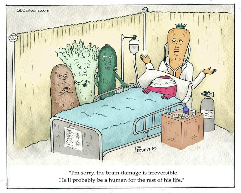 A vegetable has incurred brain damage and will remain a human for the rest of his life - The brain damage is irreversible