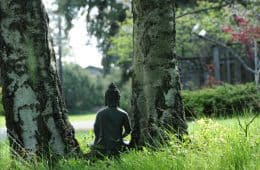 Small Buddha statue between two birch trees - Poems by James