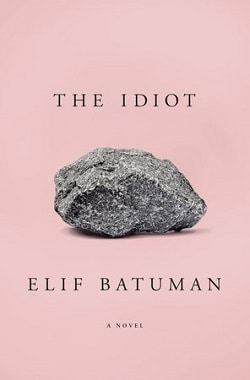 Front cover of The Idiot - Four very different books