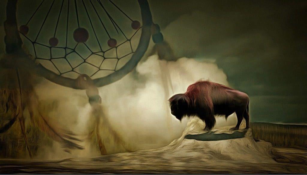 Dreamcatcher and bison