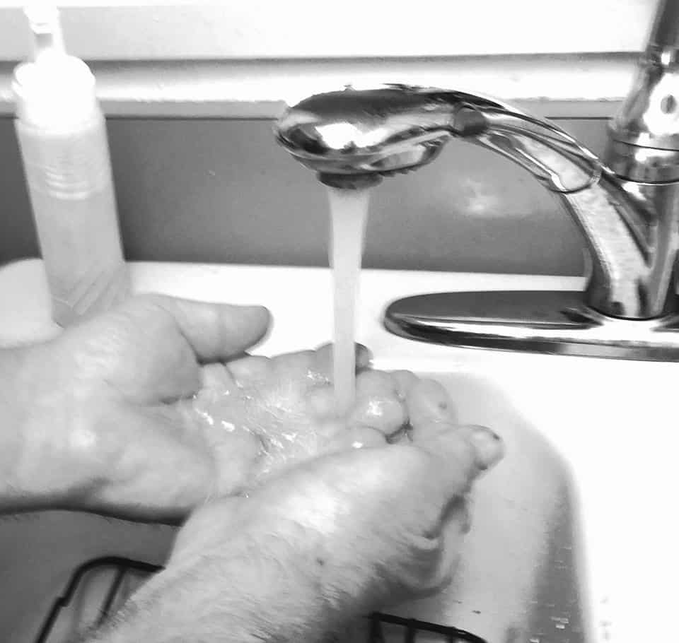 Black and white photo of someone washing hands - Poems by Max Reif