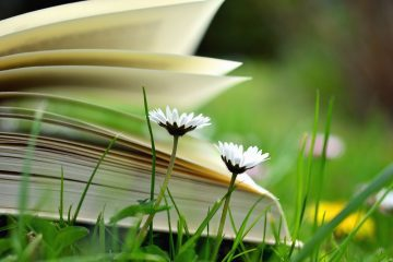 Dandelions next to book in meadow grass - Sermon series