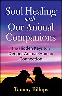 Front cover of book - Soul healing with our animal companions
