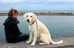 Woman outdoors with golden retriever on leash - Soul healing with our animal companions