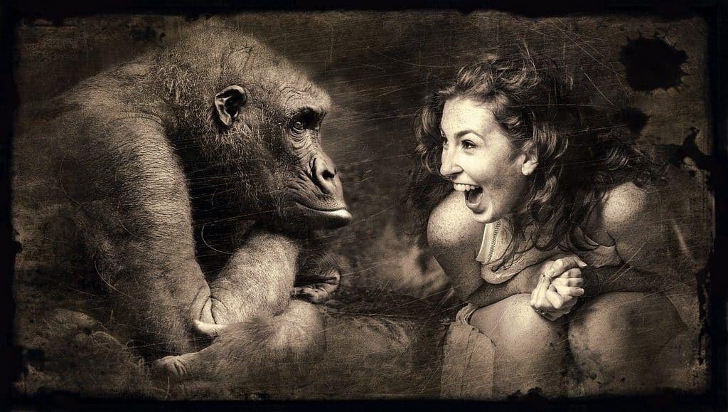 girl laughing next to a gorilla
