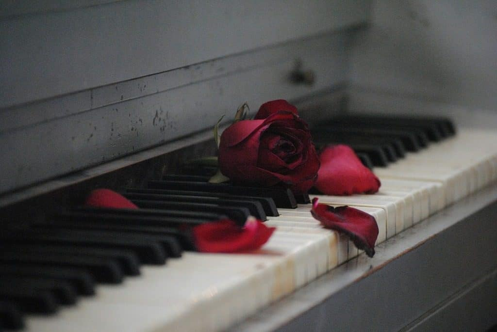 piano with rose on keyboard